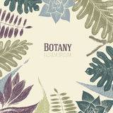 Hand drawn botany vector seamless pattern. Vintage background. Hand drawn botany vector seamless pattern. Vintage background with exotic plants Royalty Free Stock Image