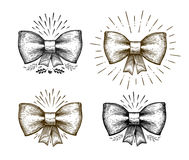 Hand drawn bow. Holiday symbol. Bowknot sketch, vector illustration Royalty Free Stock Images