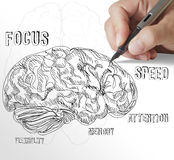 Hand drawn brain Royalty Free Stock Images