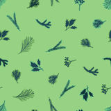 Hand drawn branches. Hand drawn tree branches - background Stock Photography