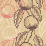 Hand drawn Brazil nuts Seamless pattern. Branch of almonds. Stock Images