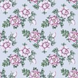 Hand-drawn briar vintage seamless pattern. Gentle vintage floral seamless pattern with dog-roses Stock Photo