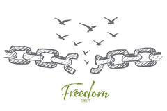 Hand drawn broken chain and flock of birds over it. Vector hand drawn freedom concept sketch with broken chain and flock of birds flying over it Stock Image
