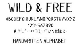 Hand drawn brush alphabet. Numbers, symbols and punctuation  on white background Stock Photos