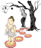 Hand drawn buddha born vector. Baby Buddha born and mom ,illustration of Buddha, isolated on white Stock Image