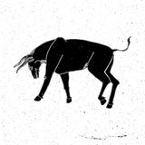 Hand drawn bull in a rack Stock Photo