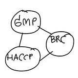 Hand drawn a business system of GMP,BRC,HACCP isolated on white Royalty Free Stock Image