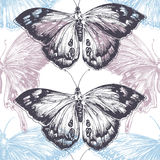 Hand drawn butterfly background Stock Image