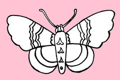 Hand drawn butterfly Stock Images