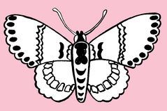 Hand drawn butterfly Royalty Free Stock Photography