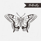 Hand drawn butterfly logo design. Vector element on the grunge background. Stock Photos
