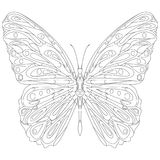 Hand drawn butterfly zentangle style Royalty Free Stock Photos