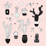 Hand drawn cacti on pink background vector illustration