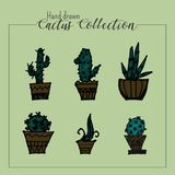 Hand drawn cactus collection in green background stock illustration