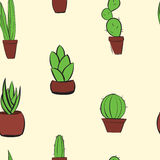 Hand drawn cactus colorful background pattern. Hand drawn cactus background colorful pattern Stock Images