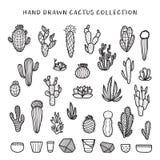 Hand drawn cactus set. Vector doodle vintage illustration. Stock Images