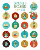 Vector cartoon cacti and succulent icon set. Stock Photography