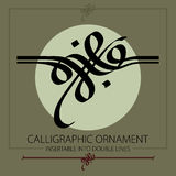 Hand drawn calligraphic ornament Stock Photos