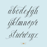 Hand drawn calligraphy alphabet. Hand drawn vector calligraphy tattoo style alphabet Stock Images