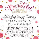 Hand drawn calligraphy font Stock Image