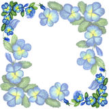Hand-drawn card with pansy flowers. Gentle floral card with pansy Royalty Free Stock Photo