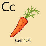 Hand drawn carrot with top. Hand drawn carrot illustration over light background like element of alphabet Stock Photos