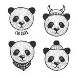 Hand drawn cartoon panda head prints set. Vector vintage illustration. Stock Image
