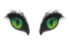Hand drawn cat eyes. Vector eps10 Royalty Free Stock Photography