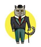 Hand drawn cat royalty free illustration