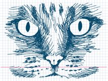 Hand drawn cat. Vector illustration Royalty Free Stock Photos