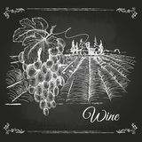 Hand drawn chalk drawing wine background Royalty Free Stock Image