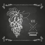 Hand drawn chalk drawing wine background Royalty Free Stock Photos