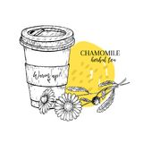 Hand drawn chamomile herbal tea to go. Tea cup, daisy flower. Vectror engraved art. Healing warm tea in paper cup. Food. Ingredient, aromatherapy, cooking. For Stock Images