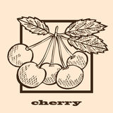 Hand drawn cherries Royalty Free Stock Photos