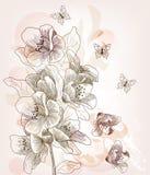 Hand drawn cherry blossom branch Royalty Free Stock Photo