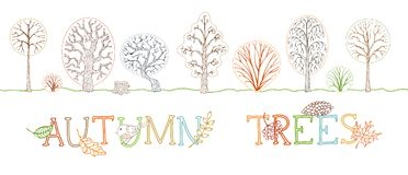 Vector set of outlined autumn trees on white background. Stock Images