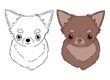 Hand drawn chihuahua colorful portrait on white background. Drawn by hands vector illustration for coloring book for children royalty free illustration
