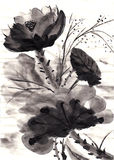 Hand drawn chinese painting lotus Stock Images