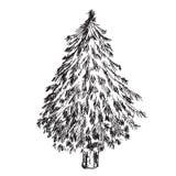 Hand drawn Christmas tree. Hand drawn isolated Christmas tree Royalty Free Stock Photos