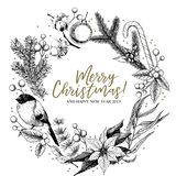 Hand drawn Christmas wreath. Fir, pine, eucalyptus, cotton, poinsettia, bullfinch, mistletoe, holly. Vector greeting. Card. Xmas composition Winter seasonal stock illustration