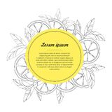 Hand drawn circle design template with citrus fruit isolated on white background. Vector illustration Vector Illustration Royalty Free Stock Images