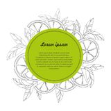 Hand drawn circle design template with citrus fruit isolated on white background. Vector illustration Vector Illustration Stock Photo