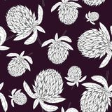 Hand drawn clover flower pattern royalty free illustration