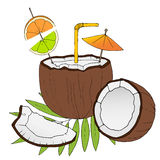 Hand drawn cocktail in coconut on white background. Vector illustration vector illustration