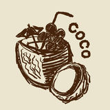 Hand drawn coco nut Stock Images