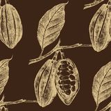 Hand drawn cocoa beans seamless Stock Image