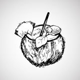 Hand drawn coconut with stick. And mint leafs Royalty Free Stock Photography