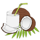 Hand drawn coconuts with leaves on white background. Stock Image