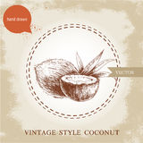 Hand drawn coconuts  on vintage background. Royalty Free Stock Photos