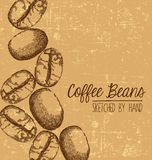 Hand drawn coffee bean design with space for text Stock Images
